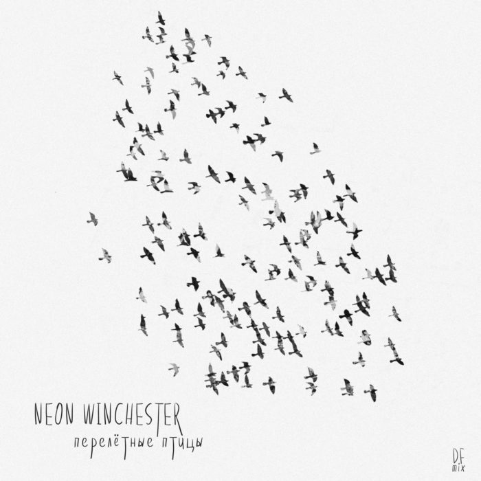 NW-Birds-Cover